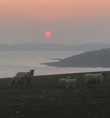 Gregs' Sunset